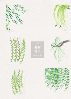 清新柳树叶子装饰图