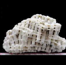 海南珊瑚石吸水石大图