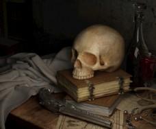 骷髅头 头骨 手枪 书