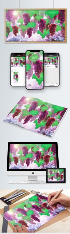 夏天成熟的葡萄果园水果小清新插图插画