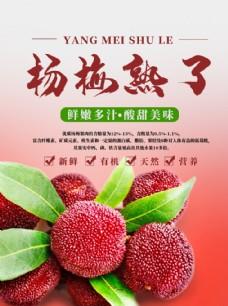 杨梅熟了PSD宣传海报