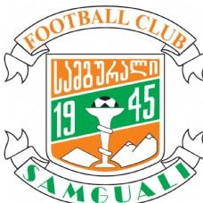 足球队标志