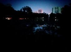 夜晚的池塘
